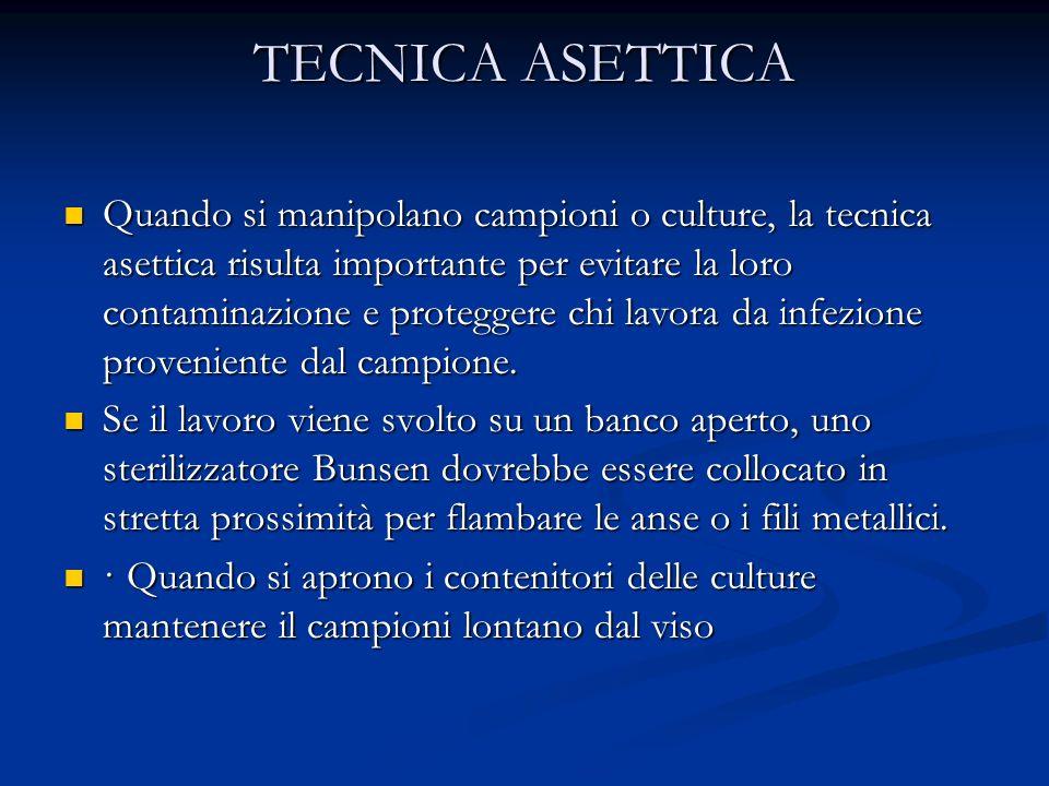 TECNICA ASETTICA Quando si manipolano campioni o culture, la tecnica asettica risulta importante per evitare la loro contaminazione e proteggere chi l