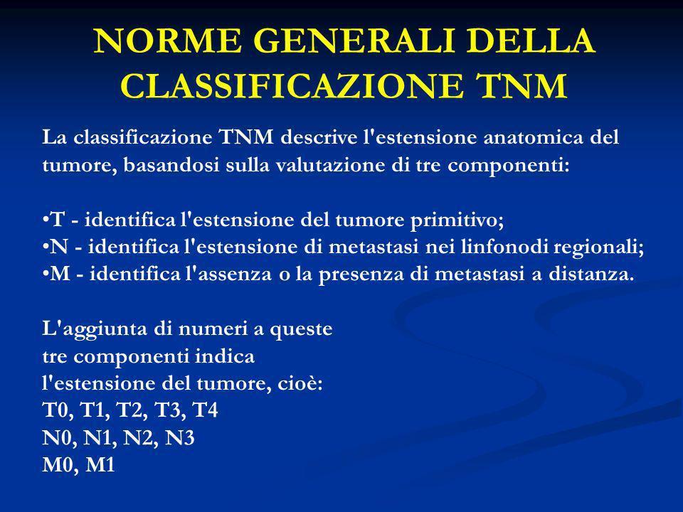 N - LINFONODI REGIONALI DEFINIZIONI GENERALI DELLA CLASSIFICAZIONE TNM NXI linfonodi regionali non possono essere definiti.