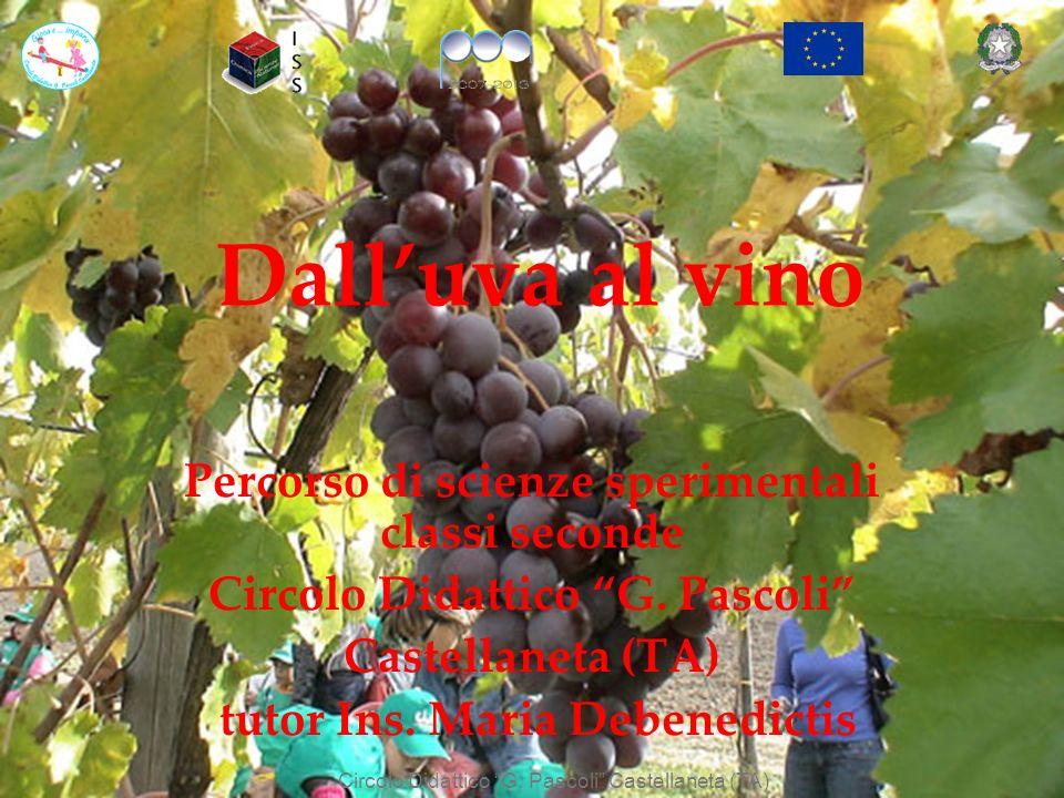 Dalluva al vino Percorso di scienze sperimentali classi seconde Circolo Didattico G. Pascoli Castellaneta (TA) tutor Ins. Maria Debenedictis Circolo D