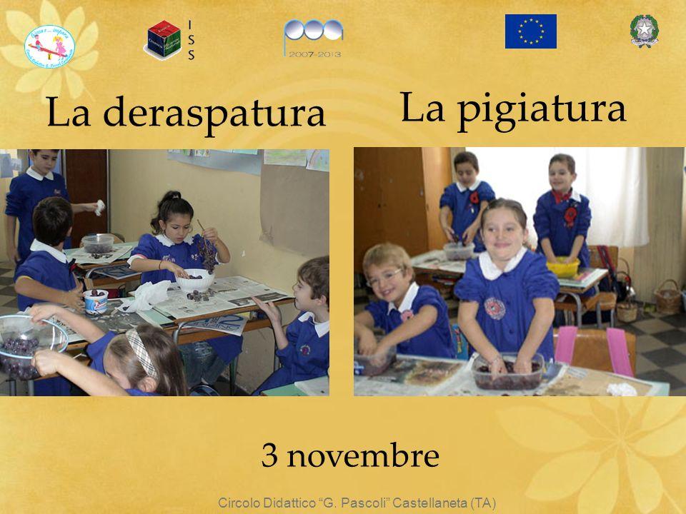 La deraspatura Circolo Didattico G. Pascoli Castellaneta (TA) 3 novembre La pigiatura