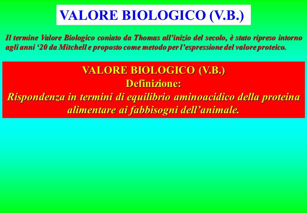 AZOTO INGERITO (proteina greggia) AZOTO ASSORBITO AZOTO TRATTENUTO AZOTOFECALE AZOTOURINARIO