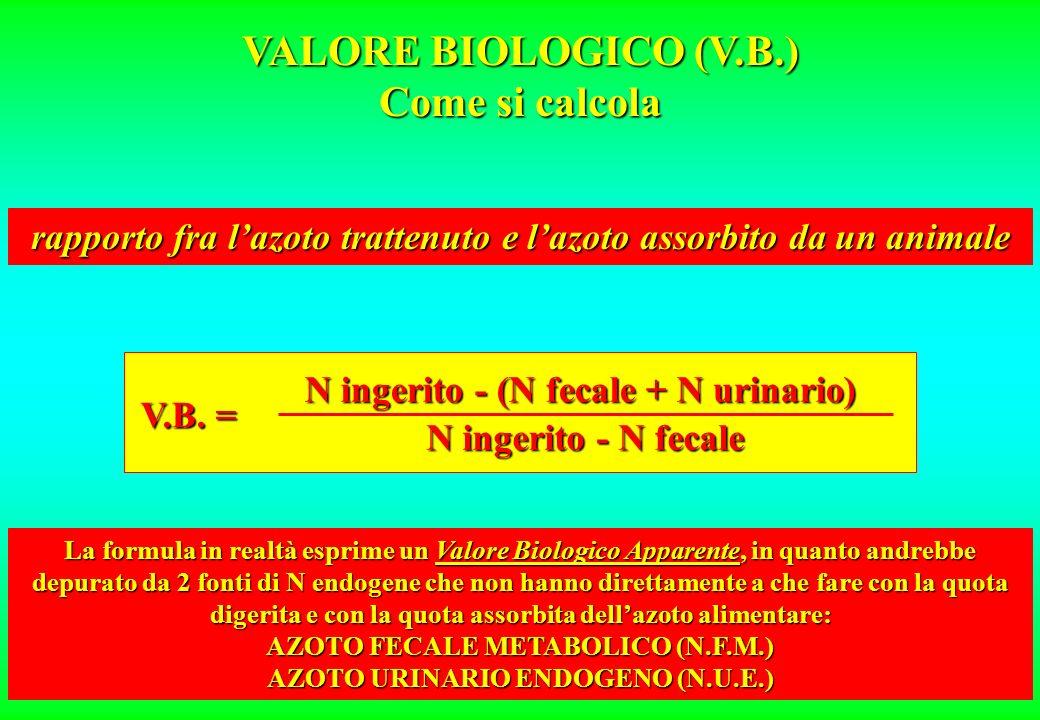 VALORE BIOLOGICO (V.B.) Il termine Valore Biologico coniato da Thomas allinizio del secolo, è stato ripreso intorno agli anni 20 da Mitchell e propost