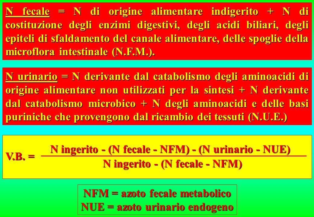 La carenza di un solo aminoacido rispetto alla quantità richiesta è responsabile del basso valore biologico di una proteina alimentare. AMINOACIDO CRI