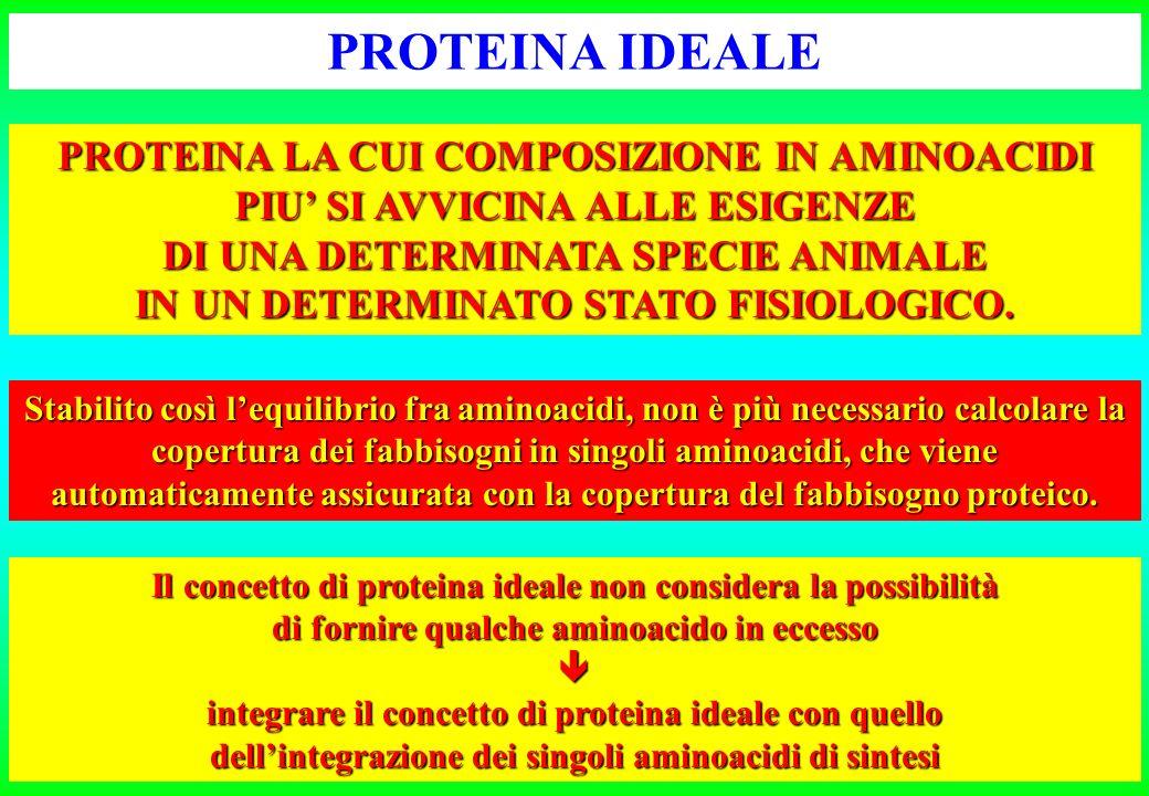 Lisina metionina + cistina treoninatriptofanoisoleucinaleucinaistidina fenilalaninna + tirosina valina703542103870236749 EQUILIBRIO FRA AMINOACIDI (g/