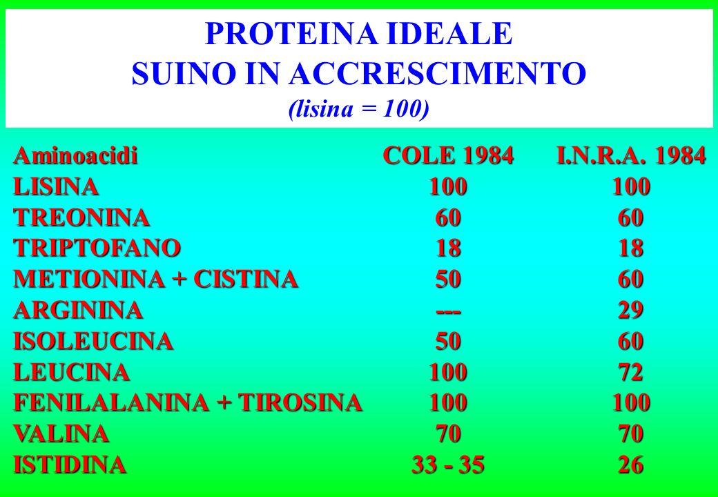 Stabilito così lequilibrio fra aminoacidi, non è più necessario calcolare la copertura dei fabbisogni in singoli aminoacidi, che viene automaticamente