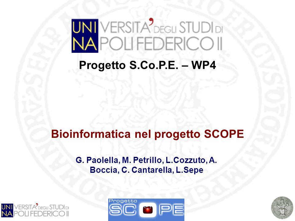 G. Paolella Napoli, 21/2/ 2008 1 Progetto S.Co.P.E.