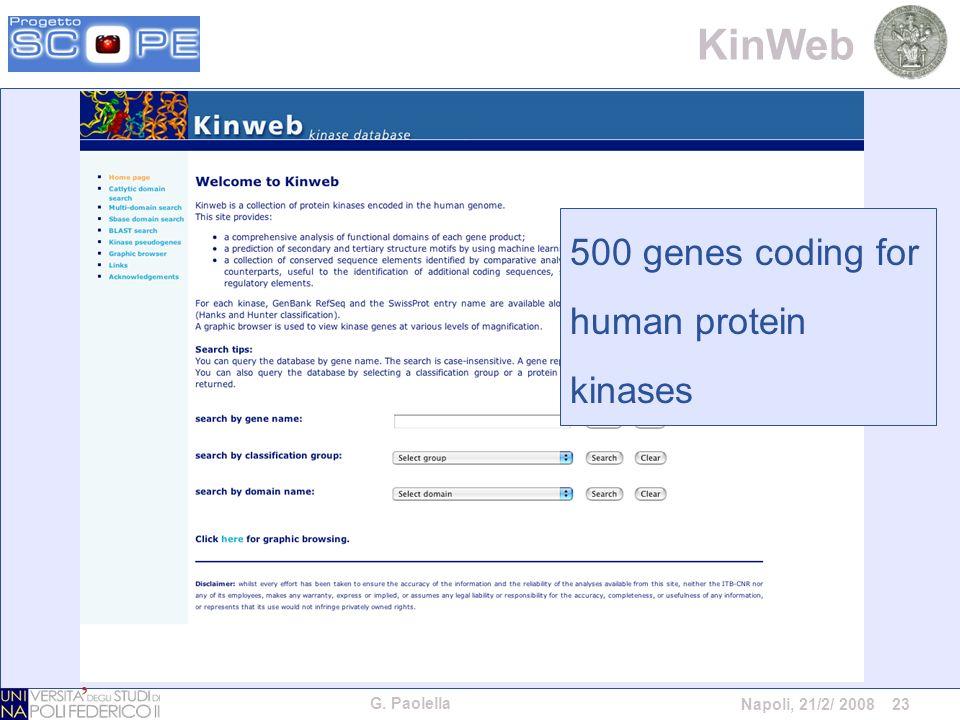G. Paolella Napoli, 21/2/ 2008 23 KinWeb 500 genes coding for human protein kinases