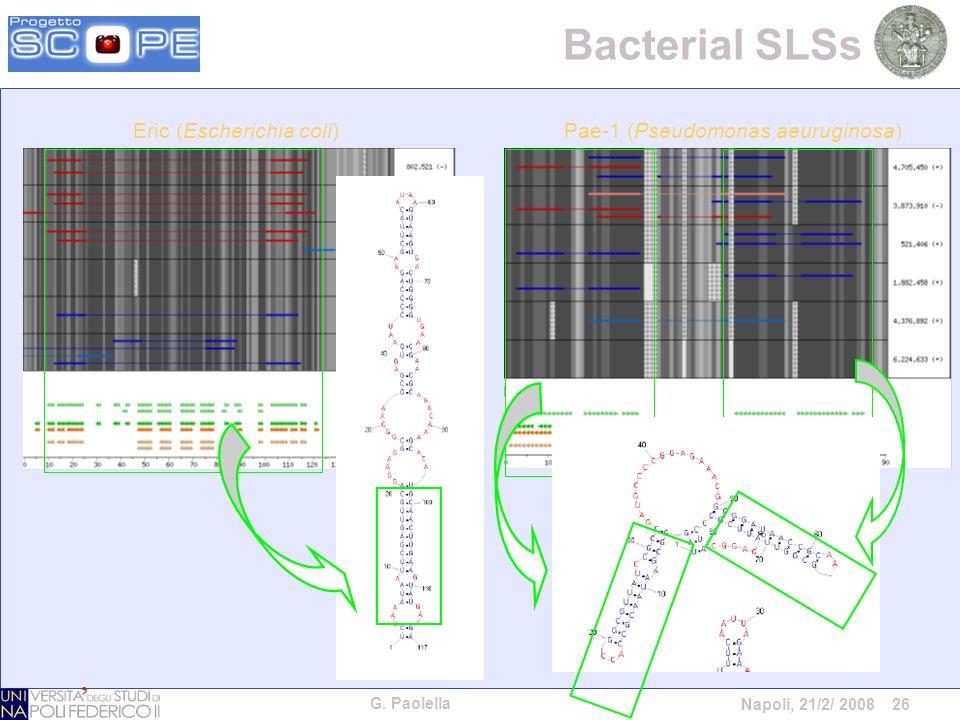 G. Paolella Napoli, 21/2/ 2008 26 Bacterial SLSs Pae-1 (Pseudomonas aeuruginosa)Eric (Escherichia coli)