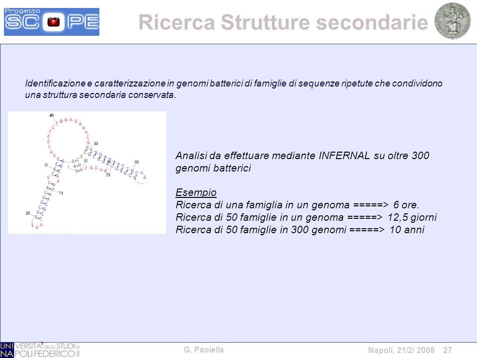 G. Paolella Napoli, 21/2/ 2008 27 Identificazione e caratterizzazione in genomi batterici di famiglie di sequenze ripetute che condividono una struttu