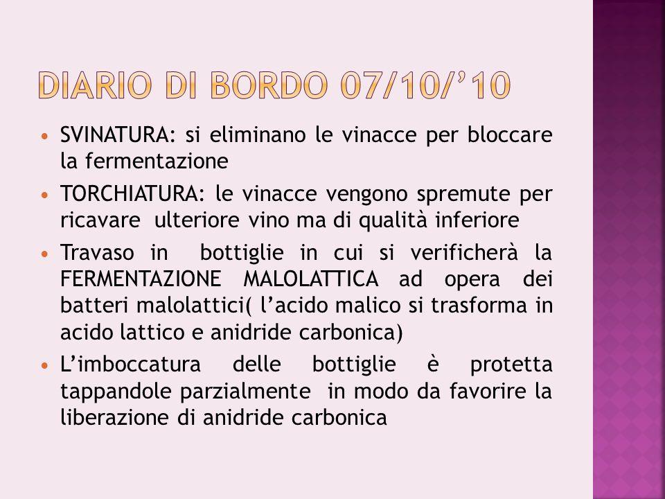 SVINATURA: si eliminano le vinacce per bloccare la fermentazione TORCHIATURA: le vinacce vengono spremute per ricavare ulteriore vino ma di qualità in