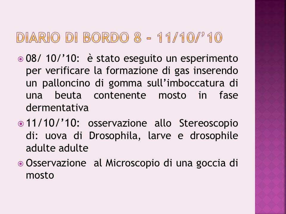 08/ 10/10: è stato eseguito un esperimento per verificare la formazione di gas inserendo un palloncino di gomma sullimboccatura di una beuta contenent