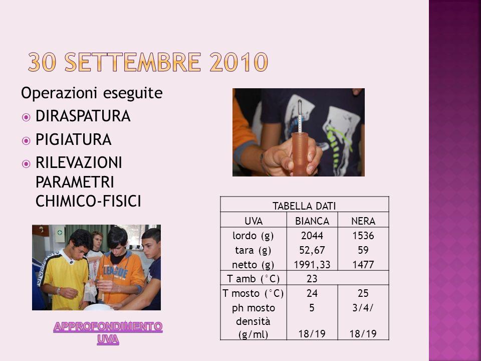 FOTOGRAFIE: Prof.ssa G.Musci e Del Giudice) GRAFICI E TABELLE: Del Giudice G.