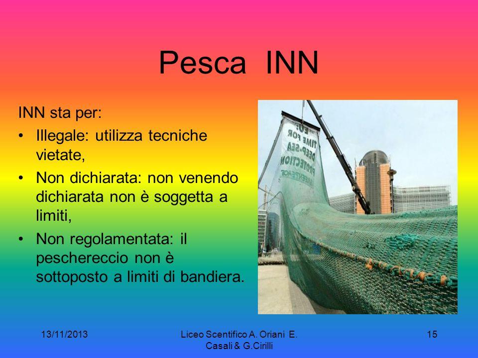 13/11/2013Liceo Scentifico A. Oriani E. Casali & G.Cirilli 14 Greenpeace è un'organizzazione non governativa ambientalista e pacifista fondata a Vanco