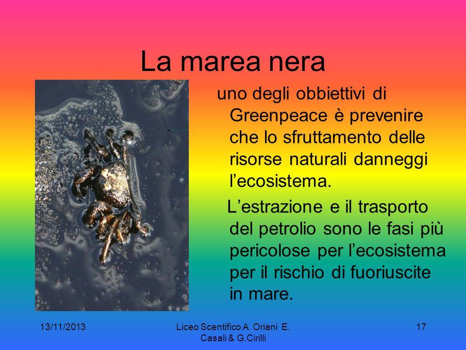 13/11/2013Liceo Scentifico A. Oriani E. Casali & G.Cirilli 16 Fra i molti danni causati dalla pesca INN i due più gravi sono limpoverimento ittico del