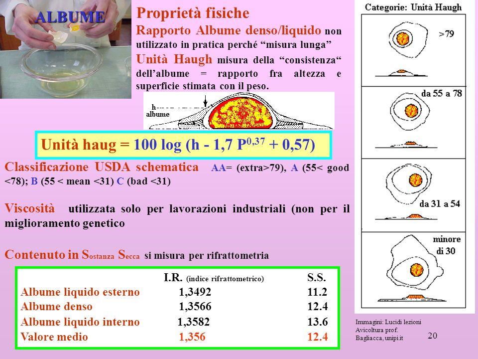 20 ALBUME Proprietà fisiche Rapporto Albume denso/liquido non utilizzato in pratica perché misura lunga Unità Haugh misura della consistenza dellalbume = rapporto fra altezza e superficie stimata con il peso.