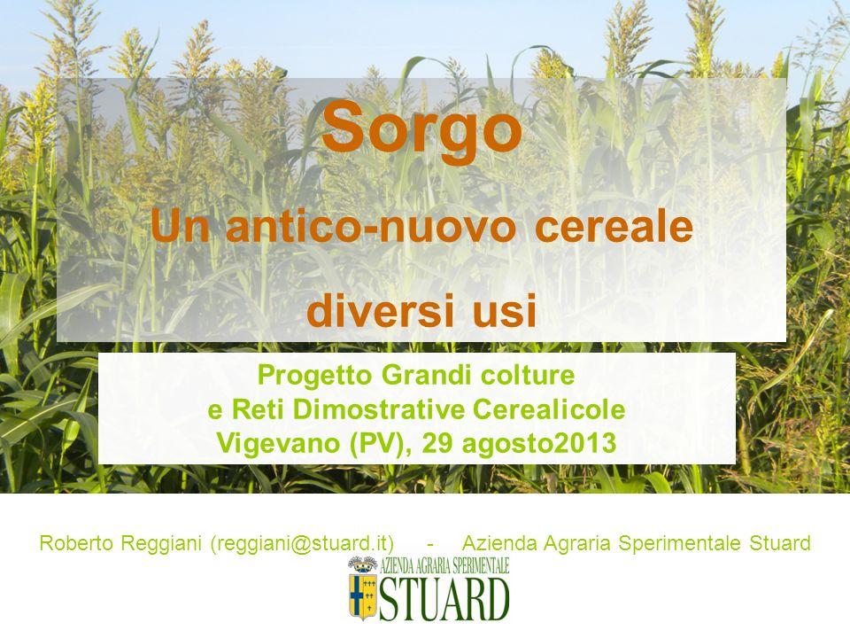 Roberto Reggiani (reggiani@stuard.it) - Azienda Agraria Sperimentale Stuard Sorgo Un antico-nuovo cereale diversi usi Progetto Grandi colture e Reti D