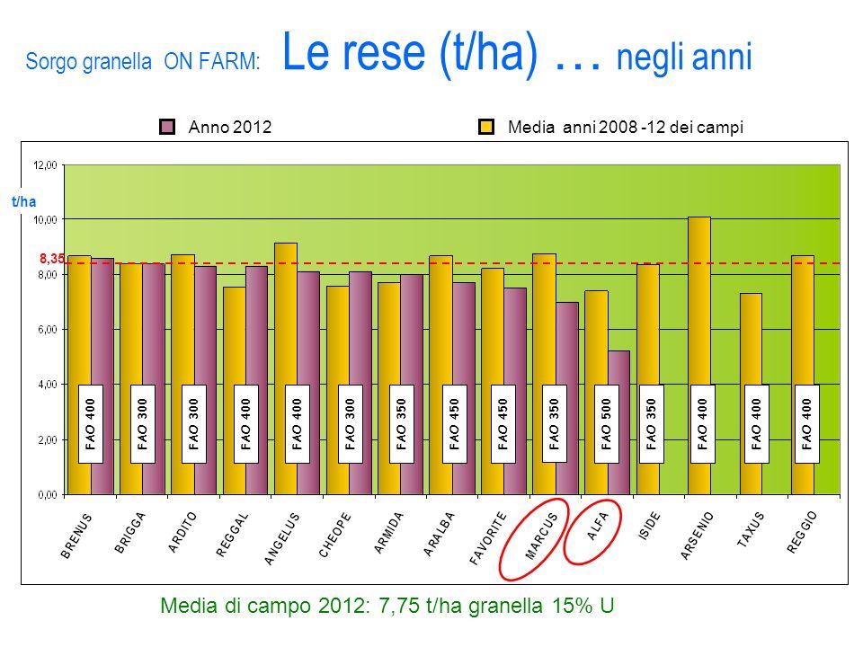 Sorgo granella ON FARM: Le rese (t/ha) … negli anni Anno 2012Media anni 2008 -12 dei campi Media di campo 2012: 7,75 t/ha granella 15% U t/ha 8,35 FAO