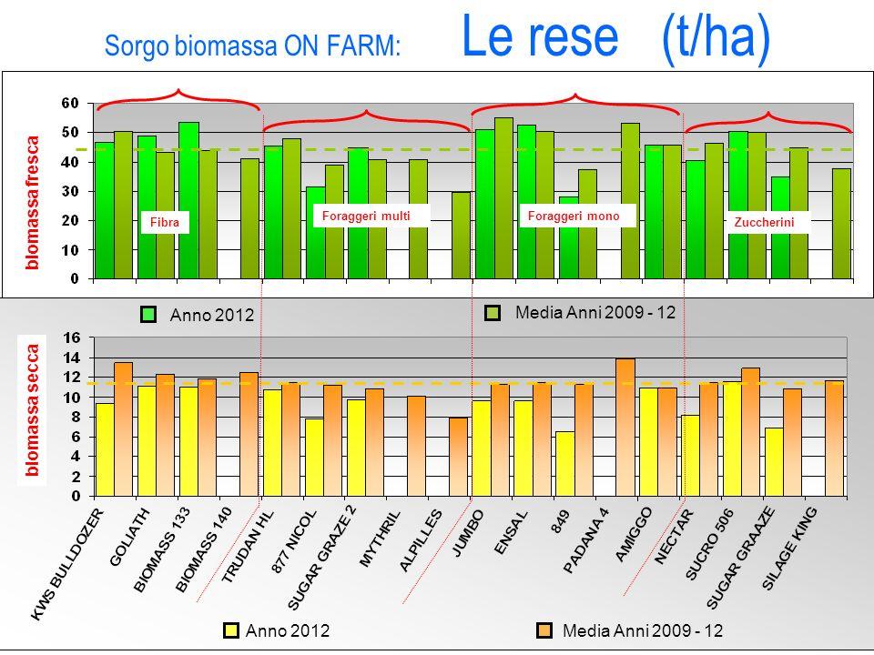 Sorgo biomassa ON FARM: Le rese (t/ha) Fibra Foraggeri monoForaggeri multi Zuccherini biomassa fresca biomassa secca Anno 2012 Media Anni 2009 - 12 An