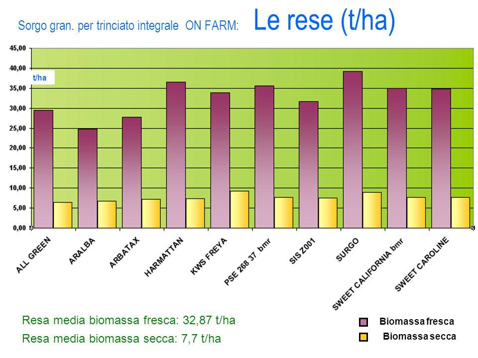 Sorgo gran. per trinciato integrale ON FARM: Le rese (t/ha) Biomassa secca Biomassa fresca Resa media biomassa fresca: 32,87 t/ha Resa media biomassa