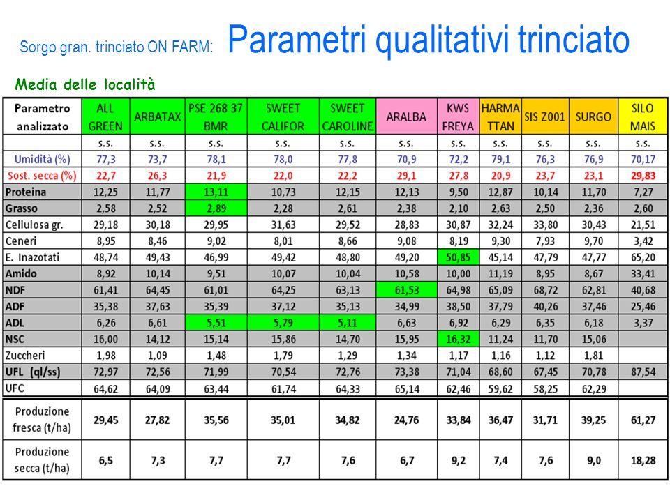Media delle località Sorgo gran. trinciato ON FARM : Parametri qualitativi trinciato