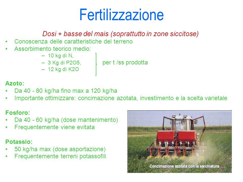 Fertilizzazione Dosi + basse del mais (soprattutto in zone siccitose) Conoscenza delle caratteristiche del terreno Assorbimento teorico medio: –10 kg