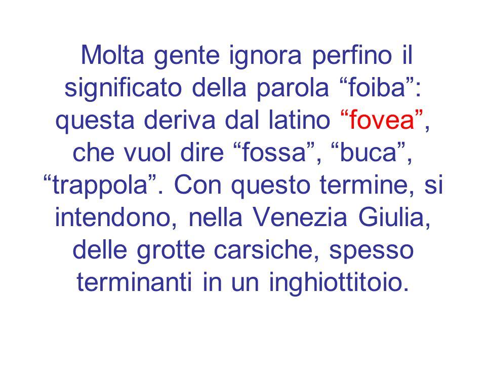 Questa è la sezione di una celebre foiba, quella di Basovizza, che, pur non essendo di origine carsica (è una miniera), dà lidea di come sia fatta una foiba.