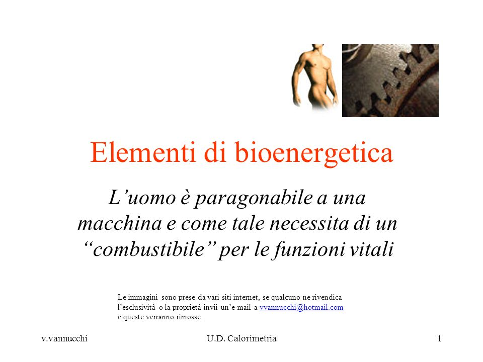 v.vannucchiU.D. Calorimetria1 Elementi di bioenergetica Luomo è paragonabile a una macchina e come tale necessita di un combustibile per le funzioni v