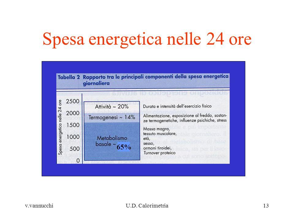 v.vannucchiU.D. Calorimetria13 Spesa energetica nelle 24 ore 65%