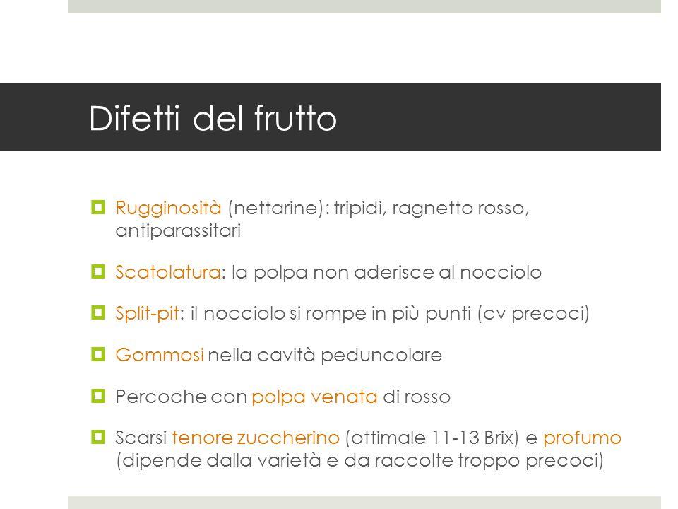Difetti del frutto Rugginosità (nettarine): tripidi, ragnetto rosso, antiparassitari Scatolatura: la polpa non aderisce al nocciolo Split-pit: il nocc