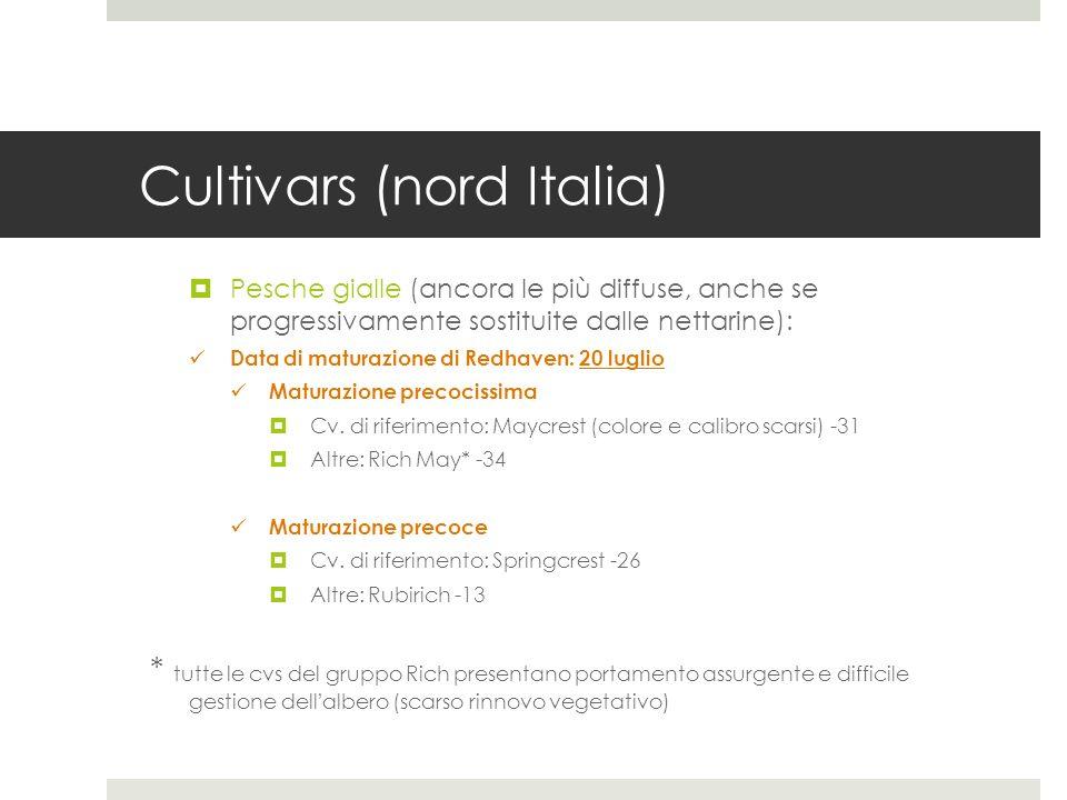 Cultivars (nord Italia) Pesche gialle (ancora le più diffuse, anche se progressivamente sostituite dalle nettarine): Data di maturazione di Redhaven: