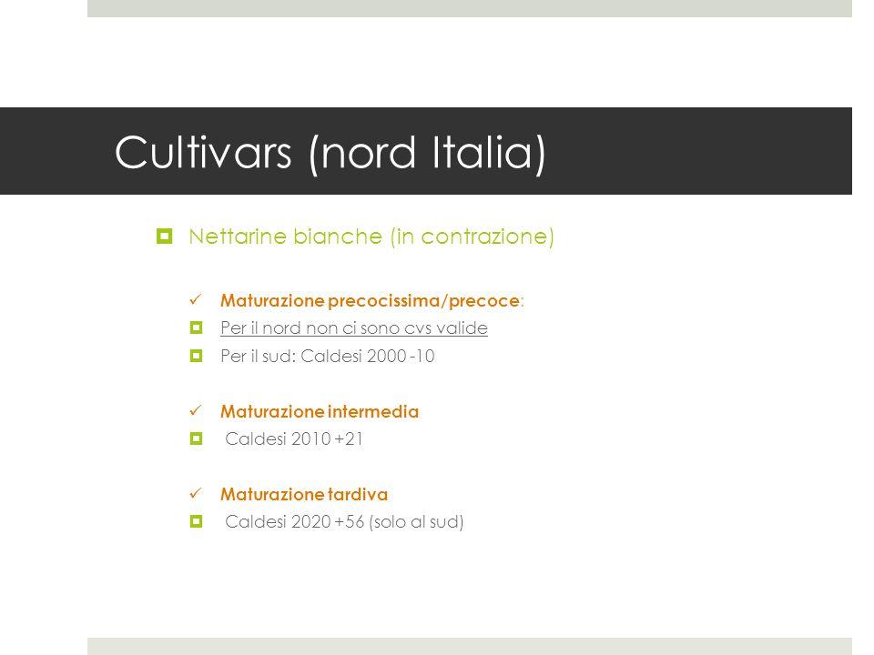 Cultivars (nord Italia) Nettarine bianche (in contrazione) Maturazione precocissima/precoce : Per il nord non ci sono cvs valide Per il sud: Caldesi 2