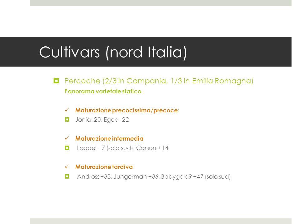 Cultivars (nord Italia) Percoche (2/3 in Campania, 1/3 in Emilia Romagna) Panorama varietale statico Maturazione precocissima/precoce : Jonia -20, Ege
