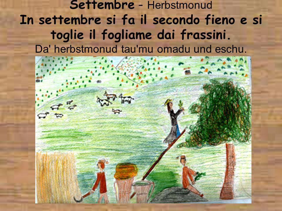 Settembre - Herbstmonud In settembre si fa il secondo fieno e si toglie il fogliame dai frassini. Da' herbstmonud tau'mu omadu und eschu.
