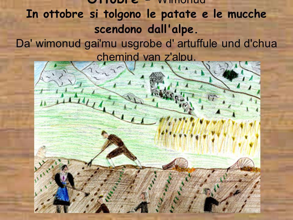 Ottobre - Wimonud In ottobre si tolgono le patate e le mucche scendono dall'alpe. Da' wimonud gai'mu usgrobe d' artuffule und d'chua chemind van z'alp