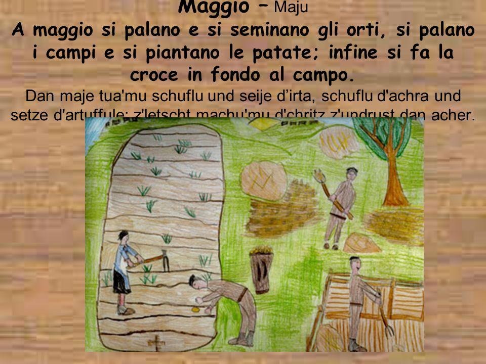 Maggio – Maju A maggio si palano e si seminano gli orti, si palano i campi e si piantano le patate; infine si fa la croce in fondo al campo. Dan maje