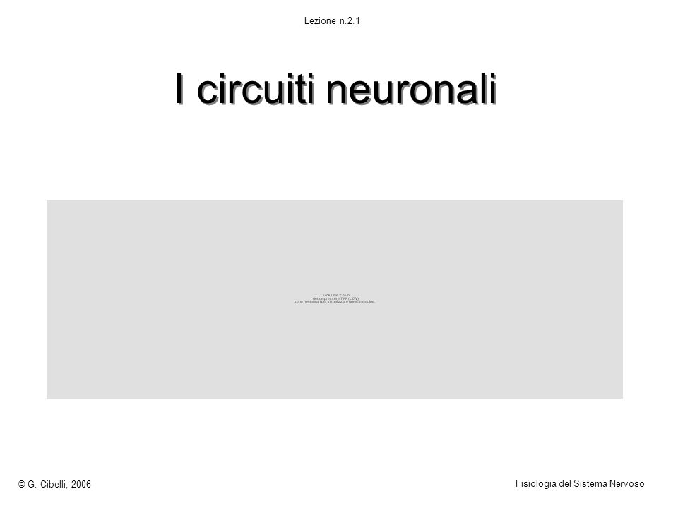 I circuiti neuronali © G. Cibelli, 2006 Fisiologia del Sistema Nervoso Lezione n.2.1
