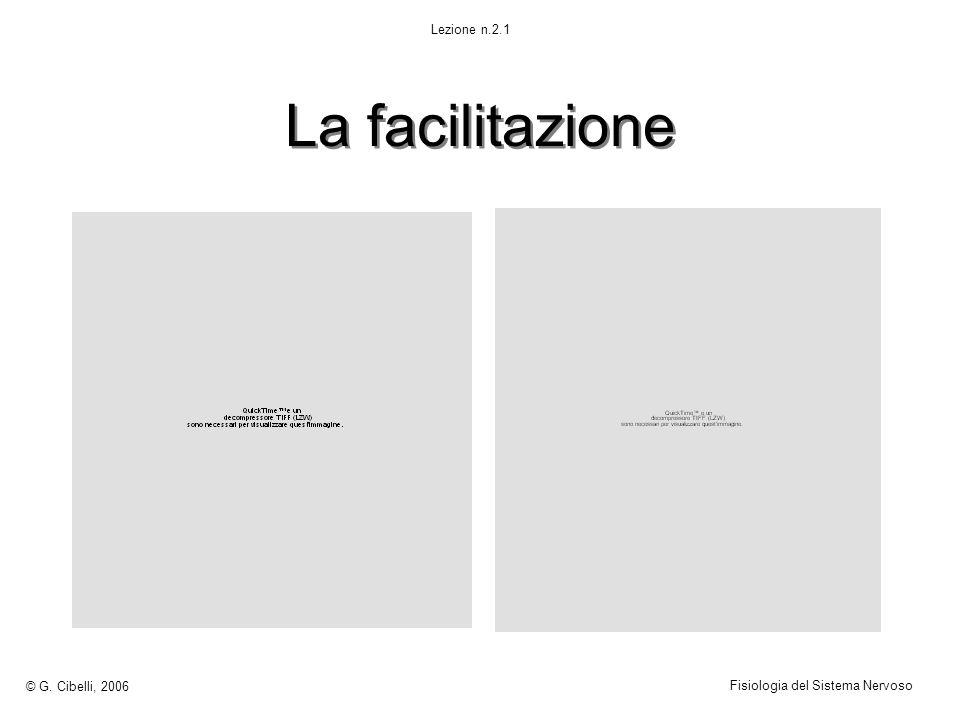 La facilitazione © G. Cibelli, 2006 Fisiologia del Sistema Nervoso Lezione n.2.1
