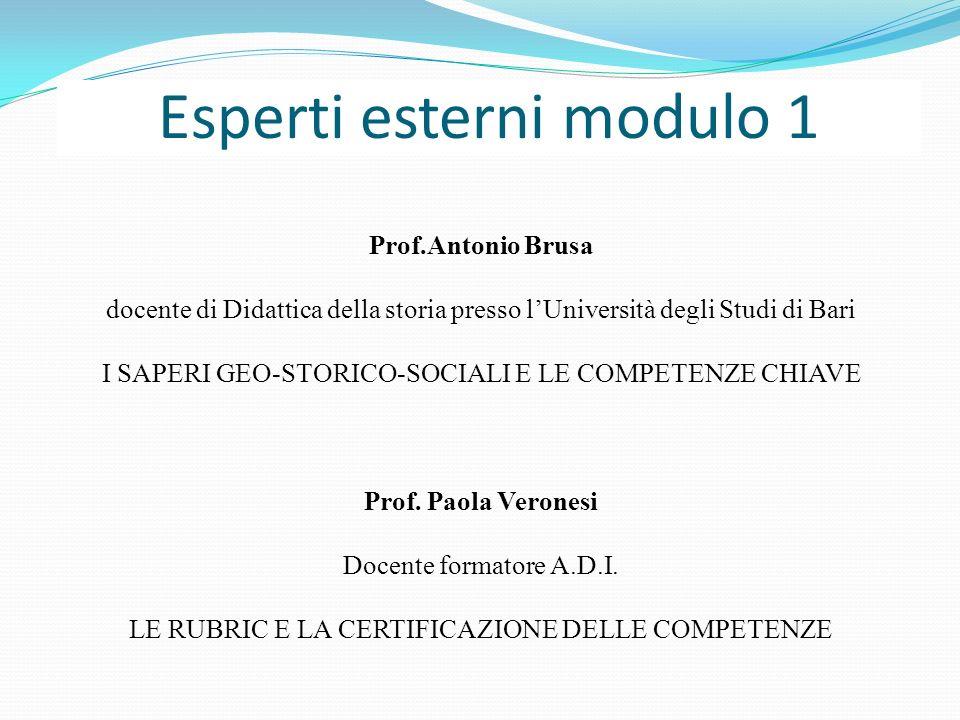 Esperti esterni modulo 1 Prof.Antonio Brusa docente di Didattica della storia presso lUniversità degli Studi di Bari I SAPERI GEO-STORICO-SOCIALI E LE