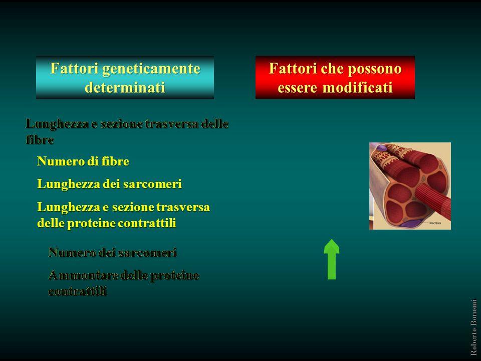 CARATTERISTICHE MECCANICHE Fattori geneticamente determinati Fattori che possono essere alterati EFFETTI DEGLI INTERVENTI FISICI Perchè si allena la f