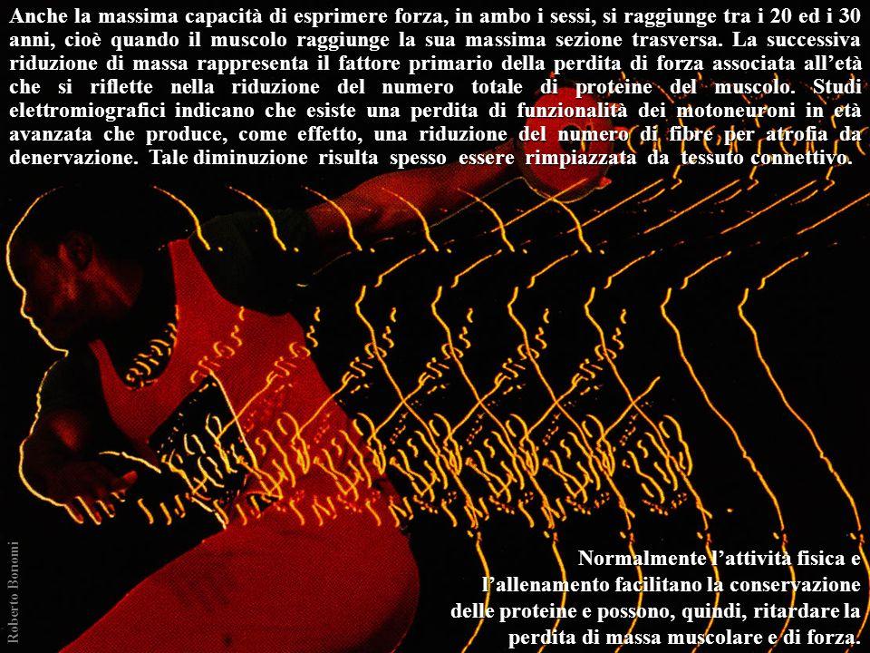 ISOMETRICA (statica) ISOMETRICA (statica) NON-ISOMETRICA (dinamica) NON-ISOMETRICA (dinamica) CONCENTRICA CONCENTRICA ECCENTRICA ECCENTRICA ISOTONICA ISOCINETICA ISOMETRICA - ECCENTRICA - CONCENTRICA ISOMETRICA ISOMETRICA - ECCENTRICA ECCENTRICA - CONCENTRICA Tipi di contrazione muscolare Roberto Bonomi (Velocità costante) (Accelerazione costante)