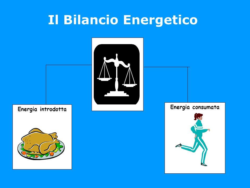 Energia introdotta Energia consumata Il Bilancio Energetico