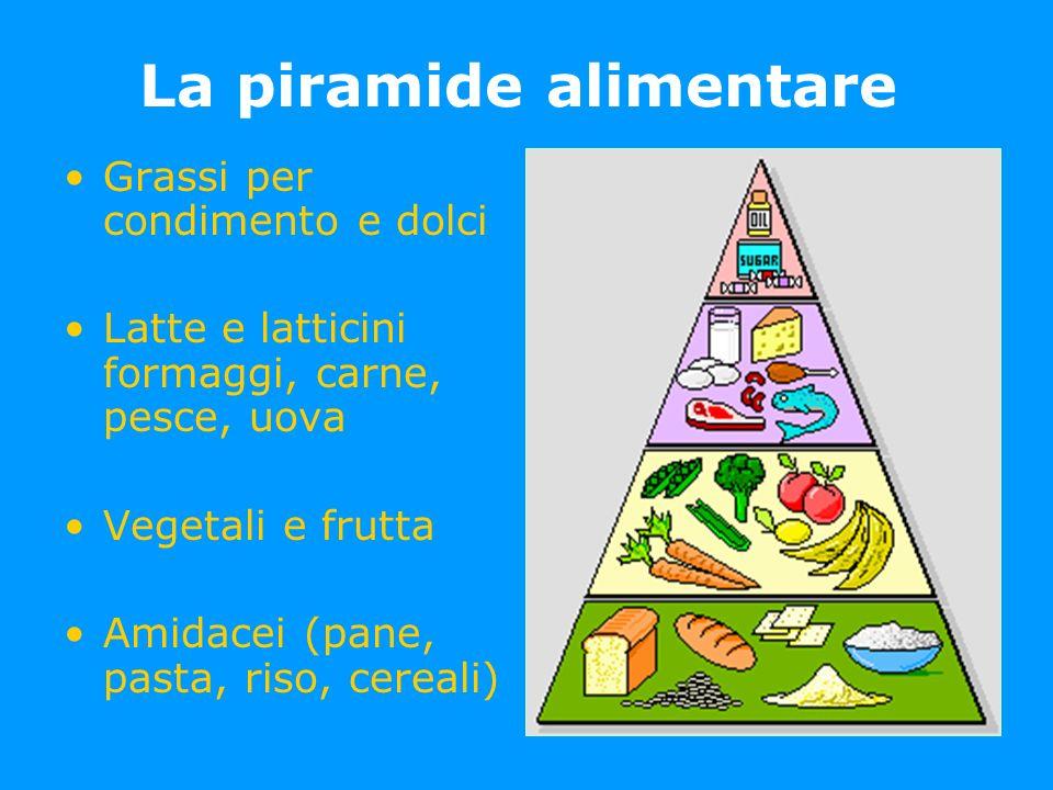 La piramide alimentare Grassi per condimento e dolci Latte e latticini formaggi, carne, pesce, uova Vegetali e frutta Amidacei (pane, pasta, riso, cer
