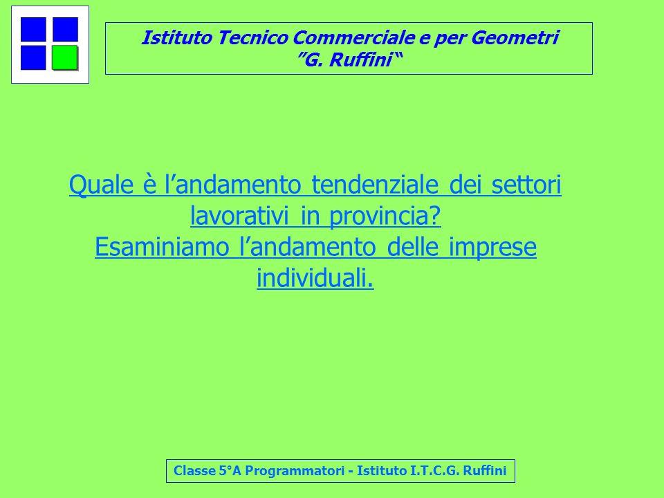 Istituto Tecnico Commerciale e per Geometri G. Ruffini Classe 5°A Programmatori - Istituto I.T.C.G. Ruffini Quale è landamento tendenziale dei settori