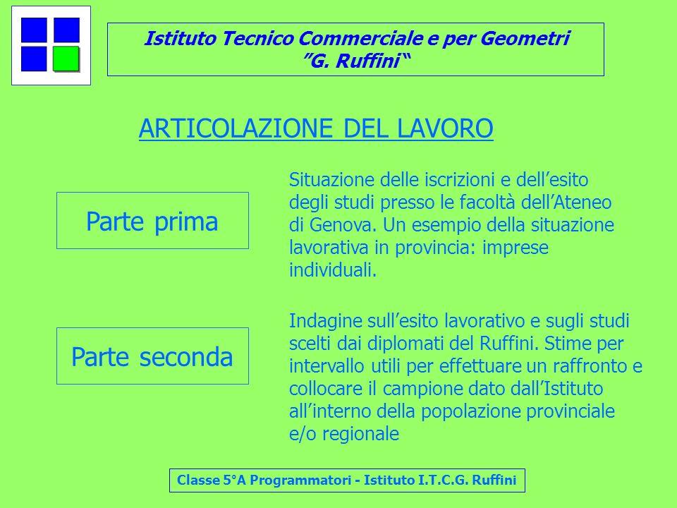 Istituto Tecnico Commerciale e per Geometri G. Ruffini Classe 5°A Programmatori - Istituto I.T.C.G. Ruffini ARTICOLAZIONE DEL LAVORO Parte prima Parte