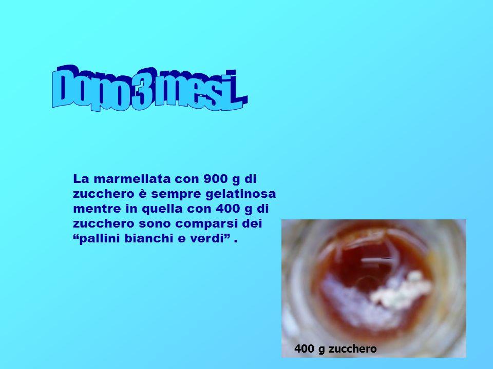La marmellata con 900 g di zucchero è sempre gelatinosa mentre in quella con 400 g di zucchero sono comparsi dei pallini bianchi e verdi. 400 g zucche