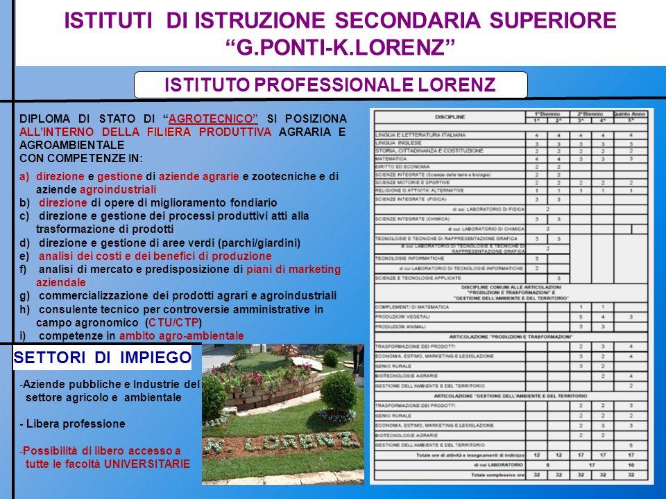ISTITUTI DI ISTRUZIONE SECONDARIA SUPERIORE G.PONTI-K.LORENZ ISTITUTO PROFESSIONALE LORENZ FILIERA DIPLOMA DI STATO DI AGROTECNICO SI POSIZIONA ALLINT