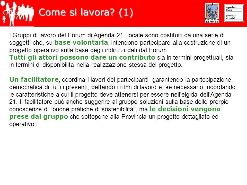 Come si lavora? (1) I Gruppi di lavoro del Forum di Agenda 21 Locale sono costituiti da una serie di soggetti che, su base volontaria, intendono parte