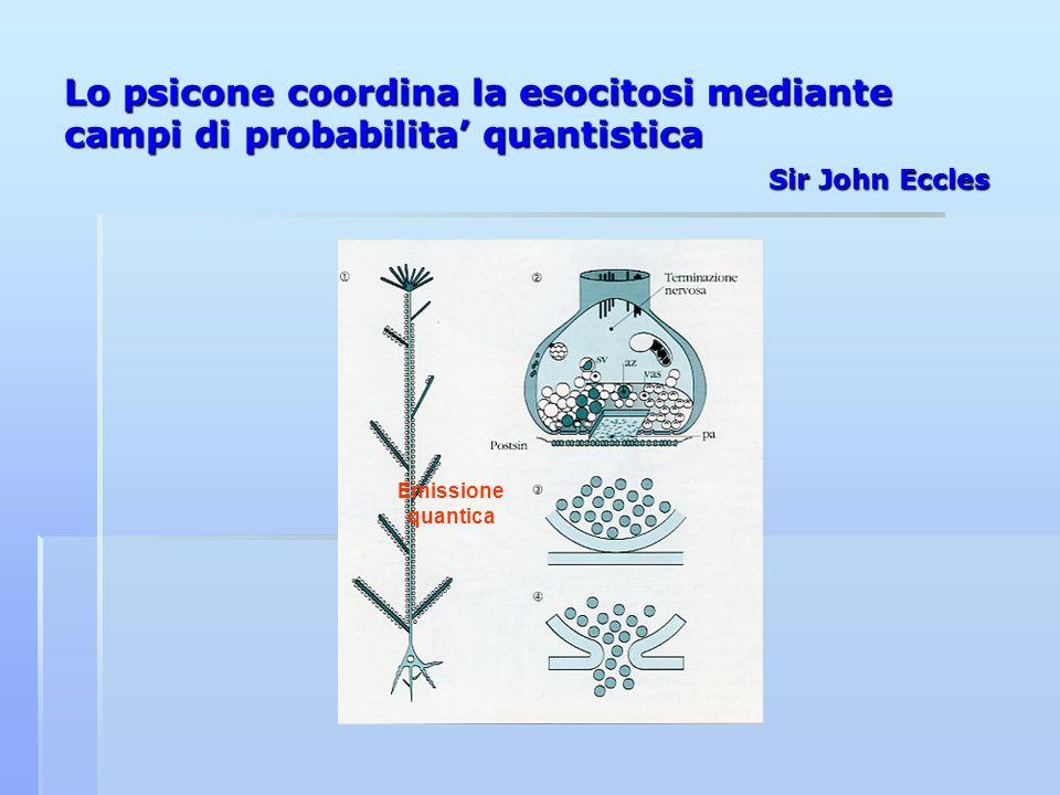 Lo psicone coordina la esocitosi mediante campi di probabilita quantistica Sir John Eccles Emissione quantica