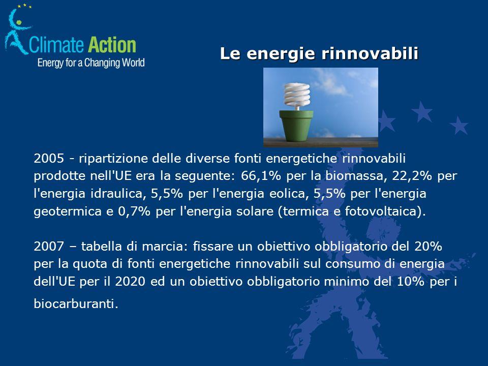 2005 - ripartizione delle diverse fonti energetiche rinnovabili prodotte nell'UE era la seguente: 66,1% per la biomassa, 22,2% per l'energia idraulica