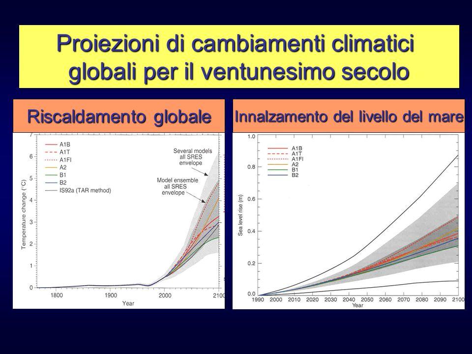 Proiezioni di cambiamenti climatici globali per il ventunesimo secolo Riscaldamento globale Innalzamento del livello del mare